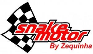 snake-motor